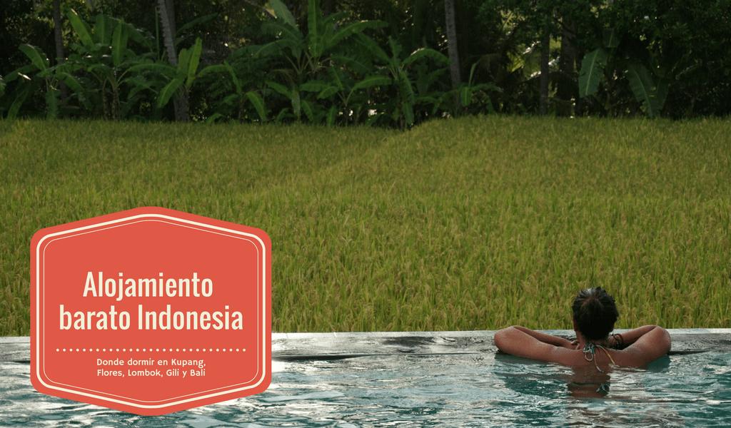 Vistas de nuestra villa en Ubud (Bali)