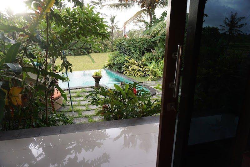 Vistas piscina desde la habitación de Rumah Warsa (Ubud)
