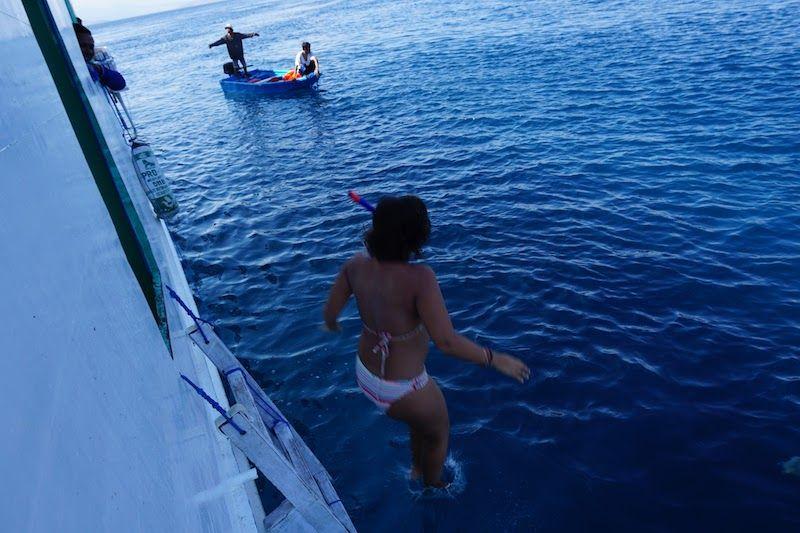 Saltando al agua para ver mantas