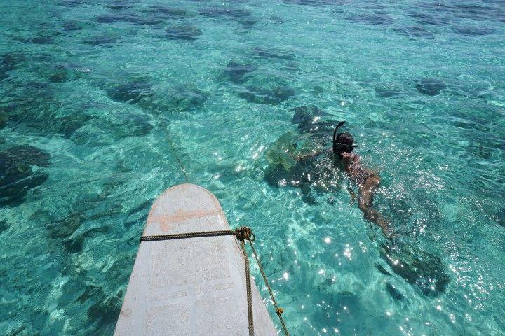 Snorkelling en el island hopping de Coron