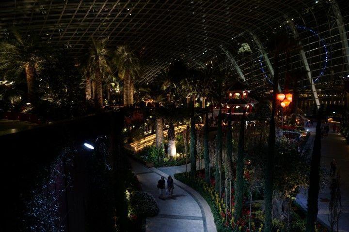 El Flower Dome, de noche
