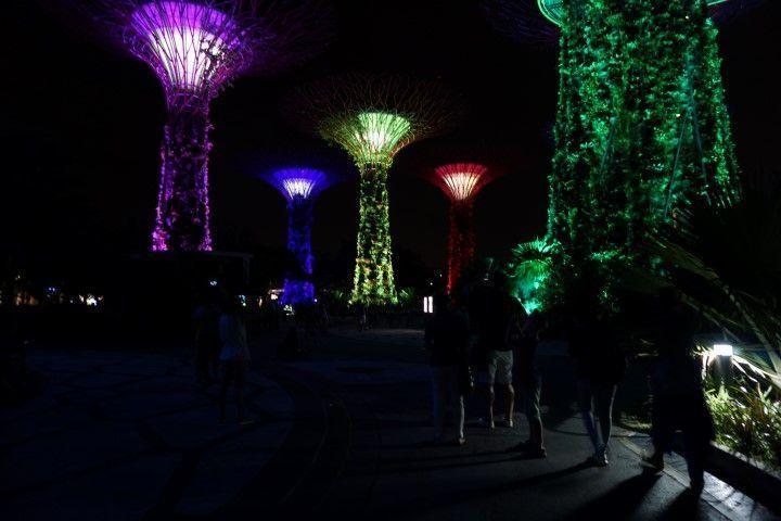 Los superárboles en el espectáculo de luces y sonido que tiene lugar todos los días, 2 veces al día.