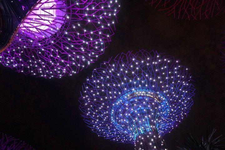 Superárboles iluminados por la noche