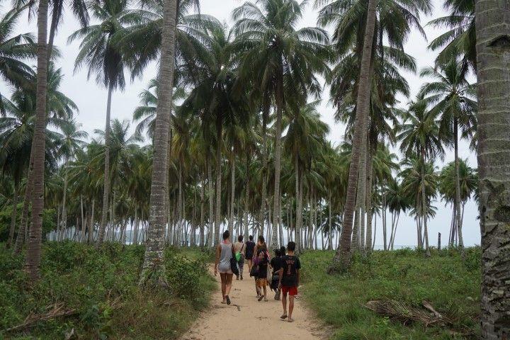 Llegando a Long Beach por un caminito entre el bosque de palmeras, acompañados de unxs peques que acababan de salir del cole.