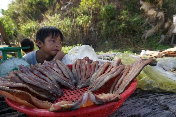 Niño vendiendo pescado (un poco aburrido) a orillas del río en las tierras centrales