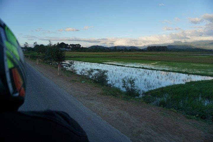 A puntito de llegar a Lak Lake,con los arrozales acompañándonos