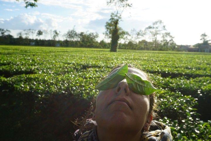 Inês en las plantaciones de té