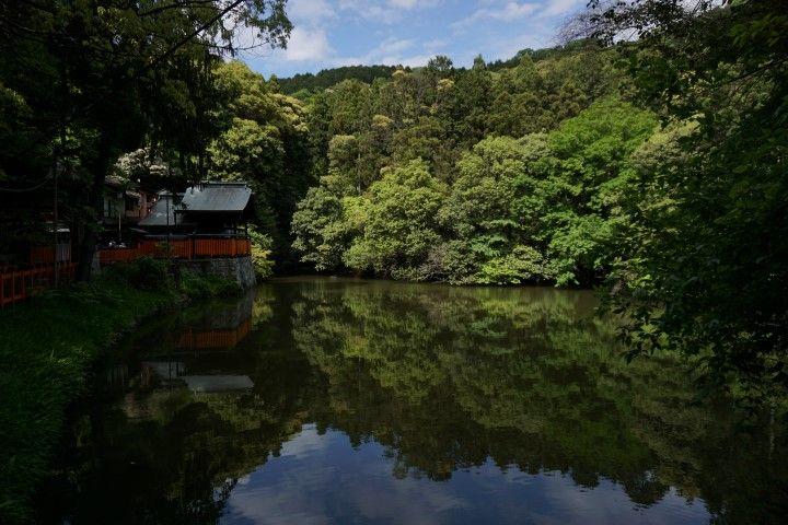 Lo bueno de las hordas de turistas de la Golden Week es que se mueven siempre por el camino marcado. En cuanto te sales 100 metros, te encuentras remansos de paz como este.