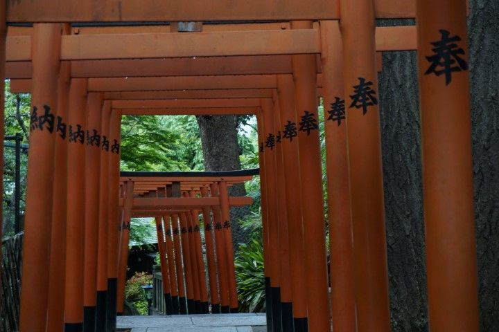 Puertas torii del Templo Gojo-Tenjin, Parque Ueno.