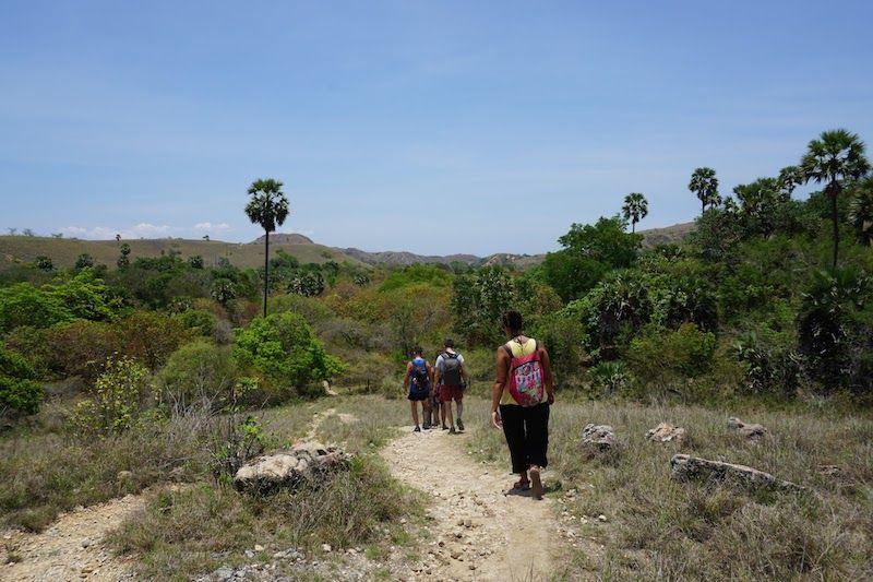 Siguiendo el sendero del Trekking por Rinca, a pleno sol