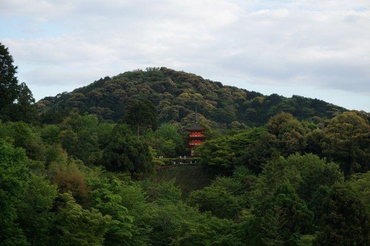 El templo Taisanji entre el verde, kioto.