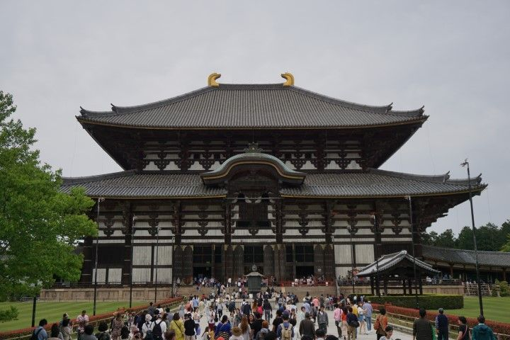 El famoso templo Todai-ji, sin apenas gente jajajaja (os repetimos: era Golden Week)