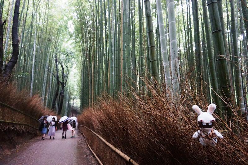 Yoko en el bambusal de Arashiyama