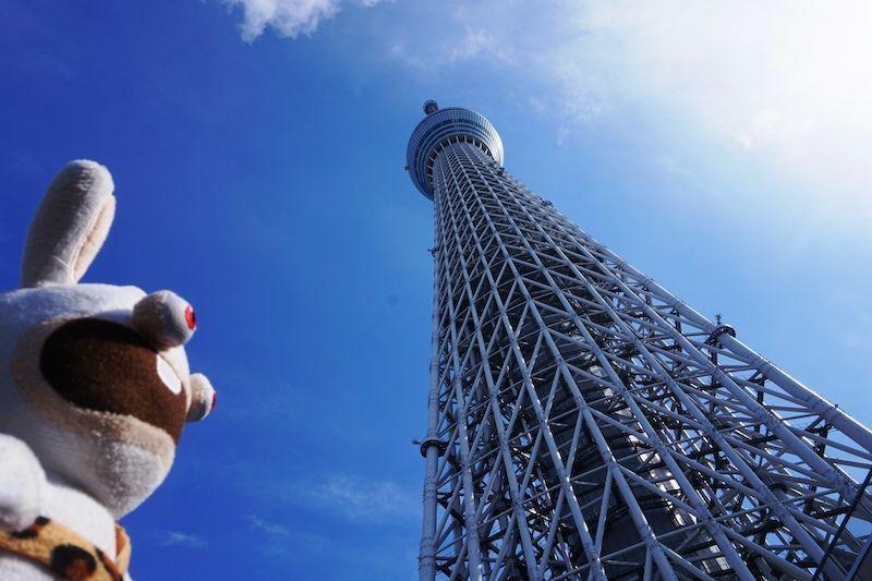 Yoko alucinada con la altura del Tokyo Skytree