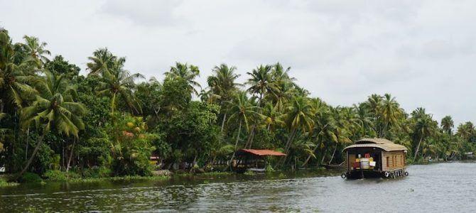 Itinerario de 25 días por Kerala, la tierra de las palmeras en el Sur de India