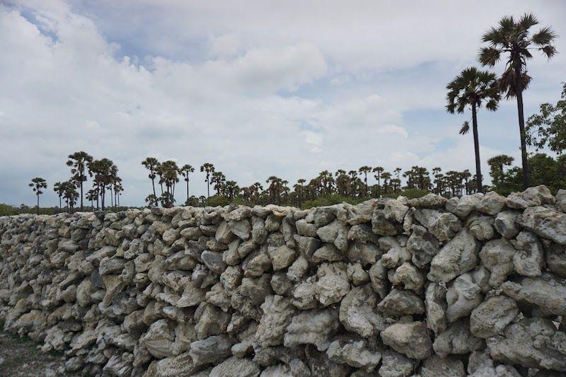 muro en la isla de Delft
