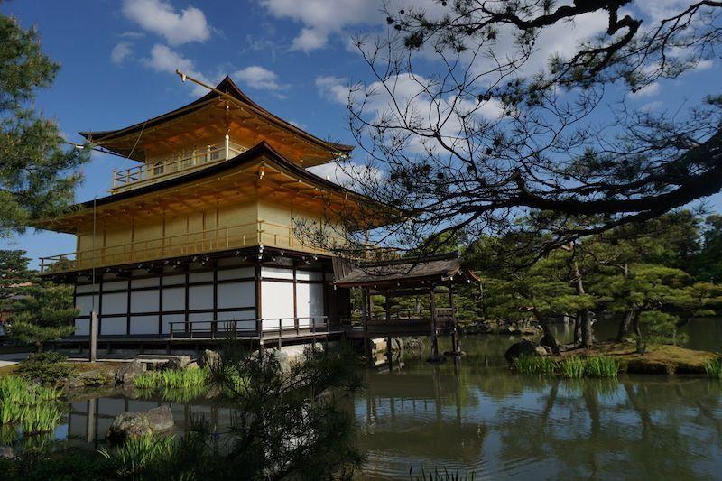 Esta imagen resume la gratificación merecida después de los 30 Km en bici que hicimos por #kyoto. El Templo Dorado: Japón en todo su esplendor...