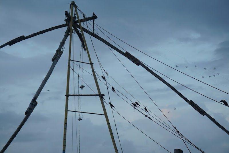 redes-pesca-chinas