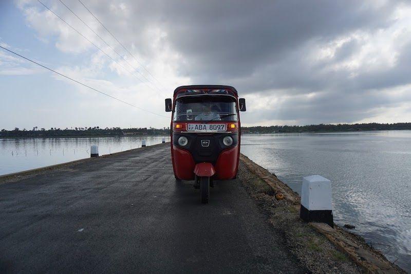 Rojillo, el rey de la carretera en Jaffna