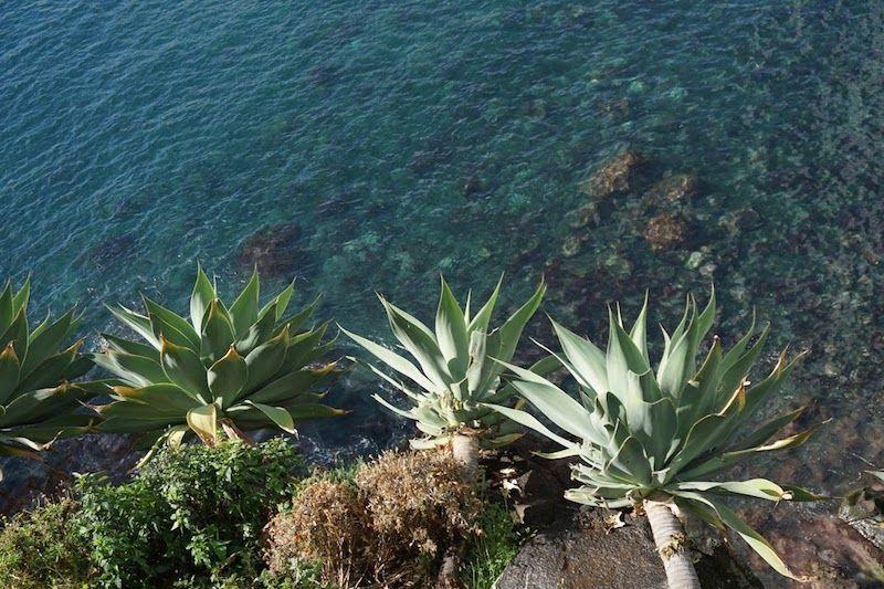 Las apetecibles aguas de la isla que no llegamos a meternos porque aunque hacia sol, estaban heladas...