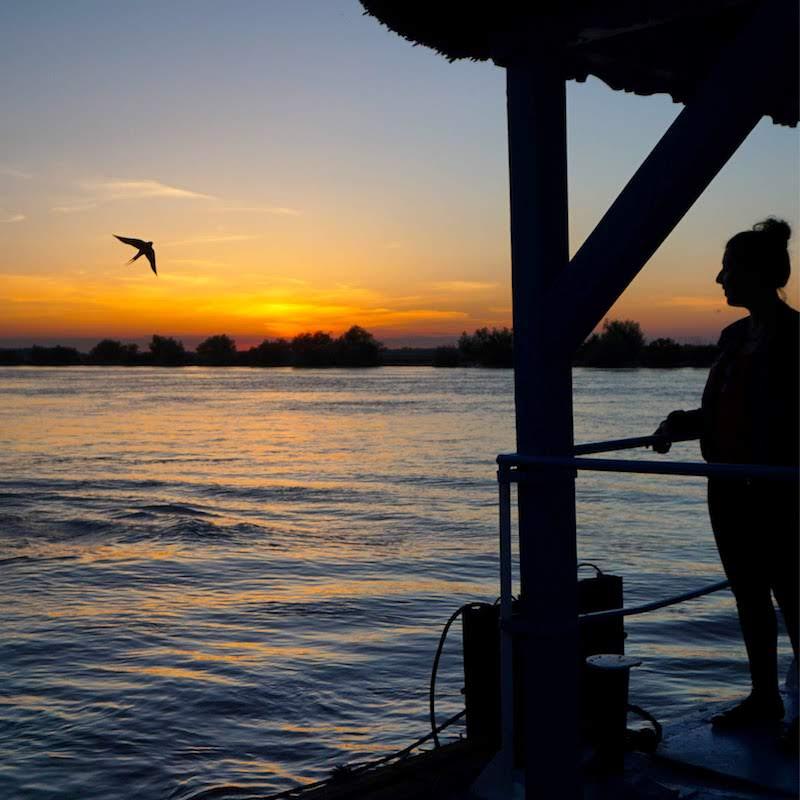 ¡Vaya bienvenida nos dio el delta del Danubio con este pedazo de atardecer con golondrina posturera posando incluida!