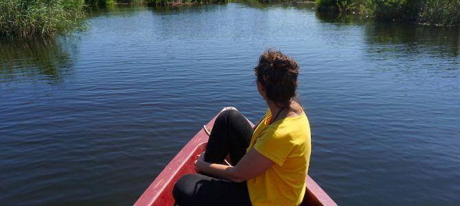 Qué ver en el Delta del Danubio y dónde dormir: guía e itinerario de 3 días inmersos en la naturaleza de Rumanía