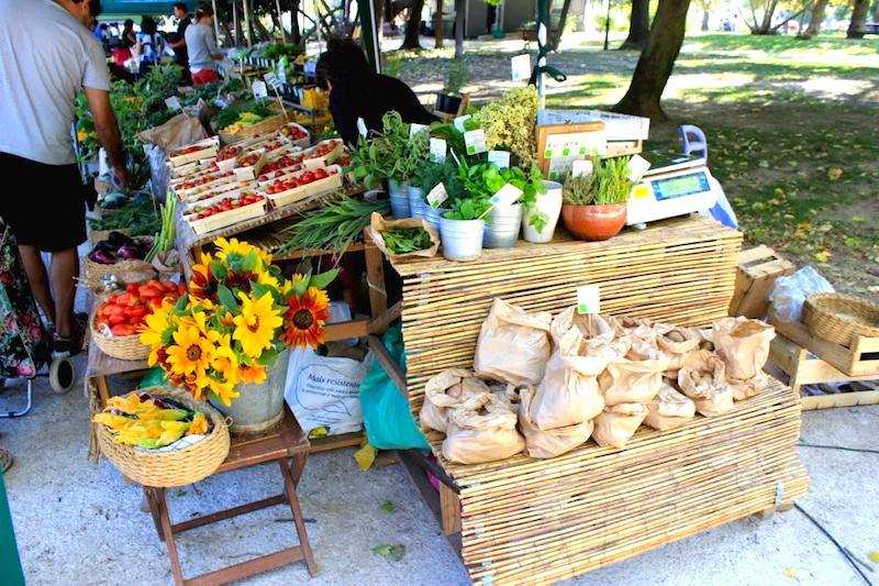 Mercado biológico de productores de Príncipe Real, los sábados por la mañana