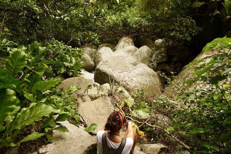 Descansando entre rocas en el Parque Nacional tayrona