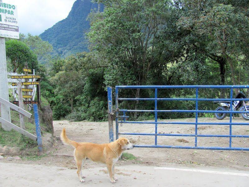 El portón azul que tenéis que atravesar para empezar el trekking en sentido contrario a las agujas del reloj.