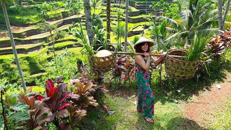 Disfrutando de unas de las más bellas (y famosas) terrazas de arroz del mundo en Tegalalang (Bali)