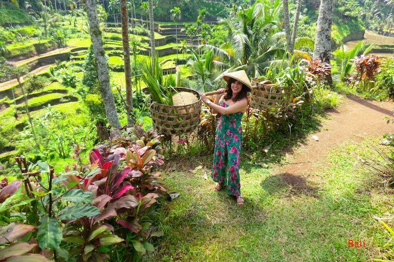 Romi mimetizada en las increíbles terrazas de arroz de Tegalalang