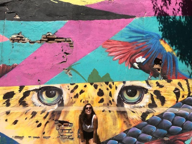 Un mural increíble en Santa Marta