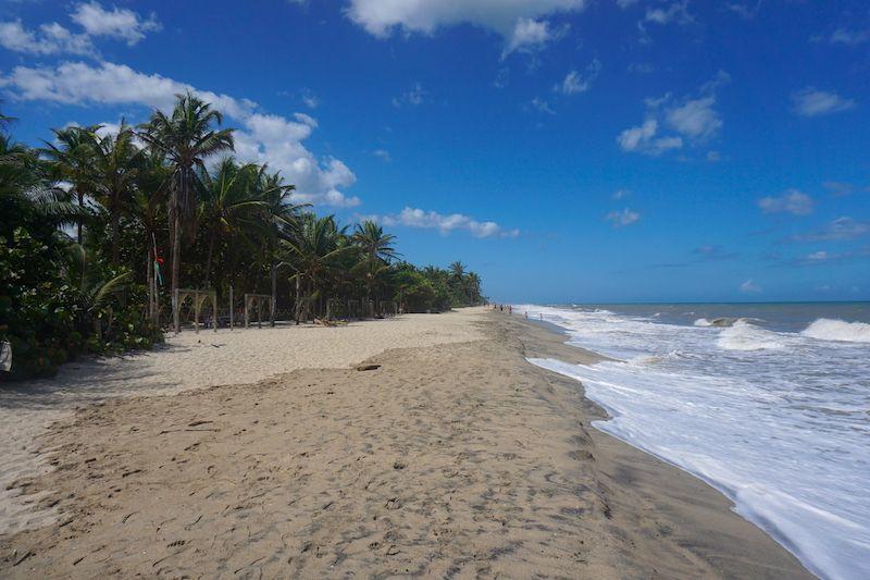 La playa de Palomino