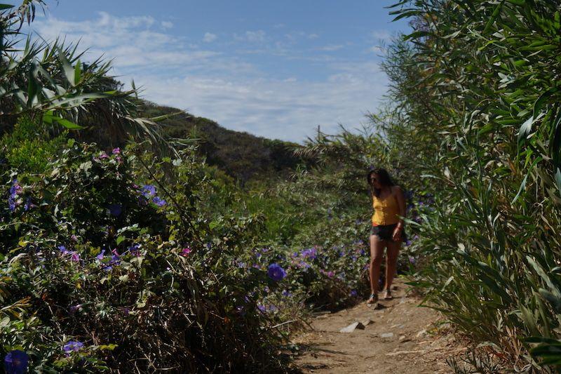 Sendero florido hacia Playa de Amália