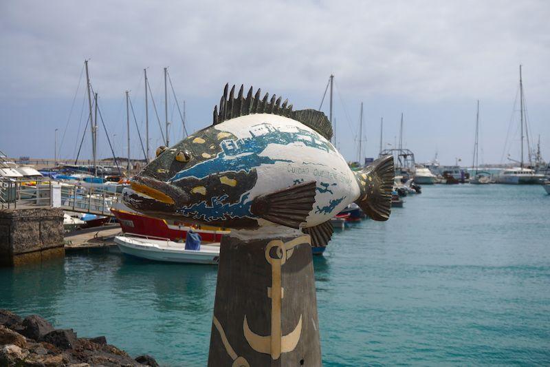 En el puerto de Corralejo