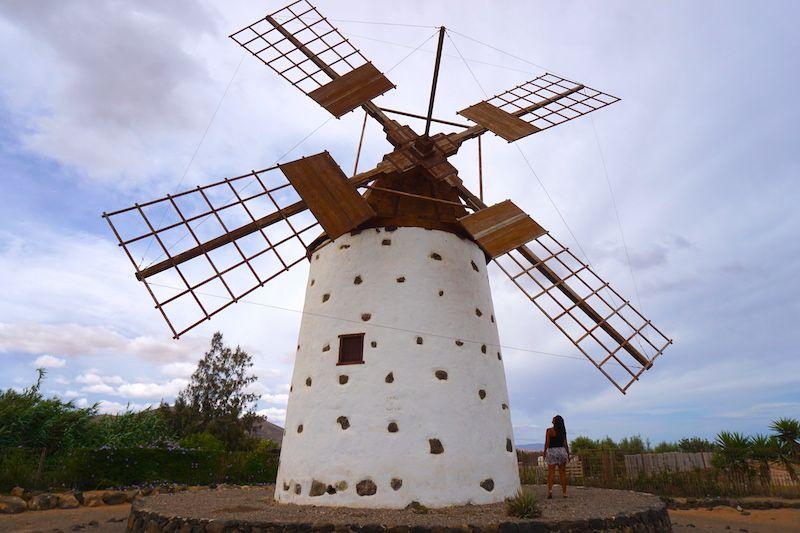 Imposible pensar en viento y no pensar en los molinos, otros protagonistas de Fuerteventura. ¿Sabías que hay una diferencia entre molino y molina? Te lo contamos aquí