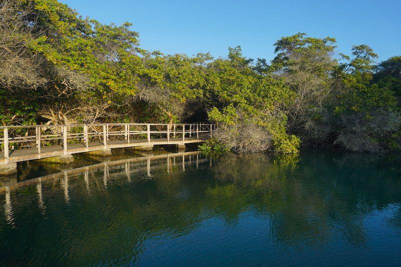 Laguna de las ninfas, Santa Cruz