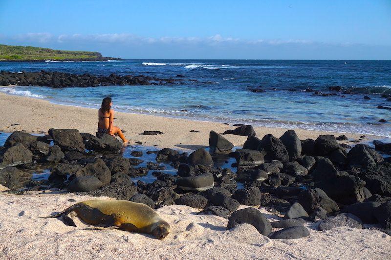 Playa Lobería, uno de los mejores planes que hacer por libre (y gratia) en San Cristóbal