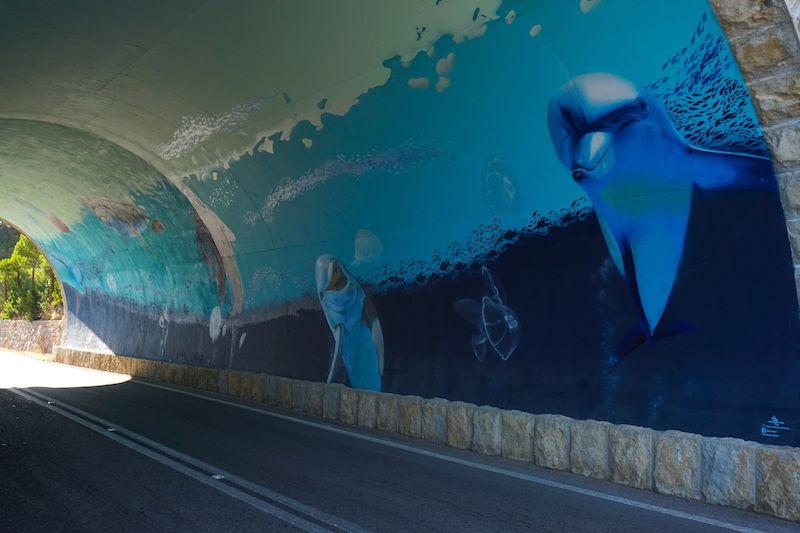 Vete con atención ya que los tuneles que te encontrarás en la Sierra de Arrábida para llegar a Figuerinha ¡tiene arte por dentro!