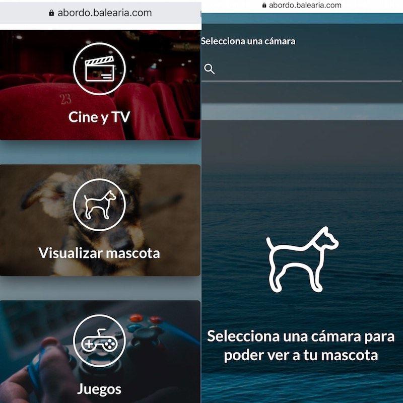La app de Baleària con la que podrás ver a tu mascota en directo