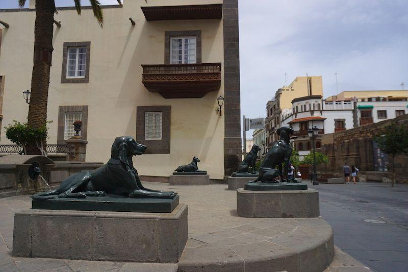 Los perros custodiando la Plaza mayor de Santa Ana