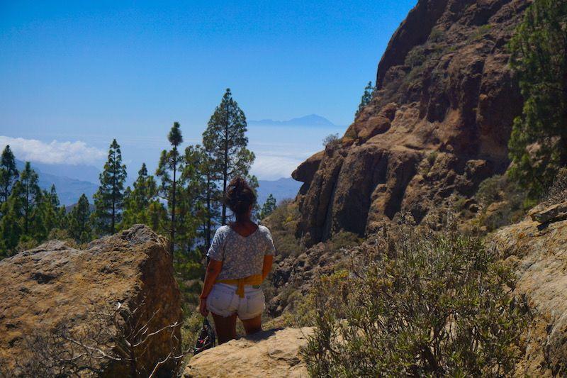 Despidiendo el Teide antes de bajar del Roque Nublo y volver al coche. No sabíamos cuando lo volveríamos a ver...